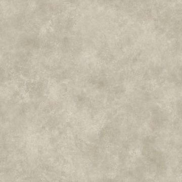 Grey Evan Texture