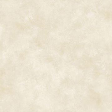 Cream Evan Texture