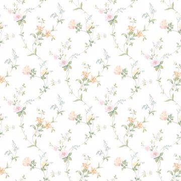 White Tiger Lily Trail