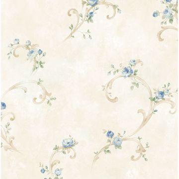 White Tearose Acanthus