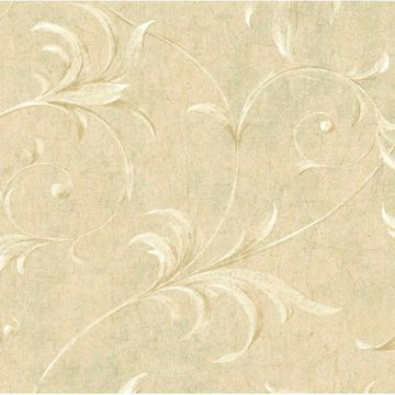 Cream Ogee Acanthus Scroll