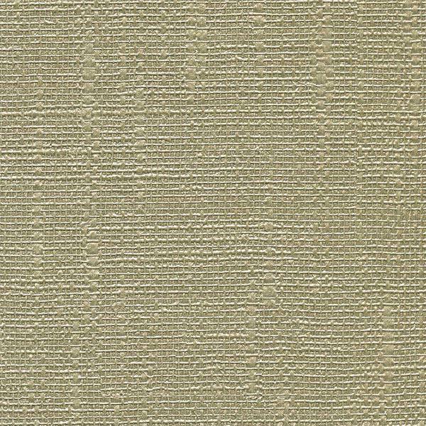 Dianne Birch Textured Shiny Lines