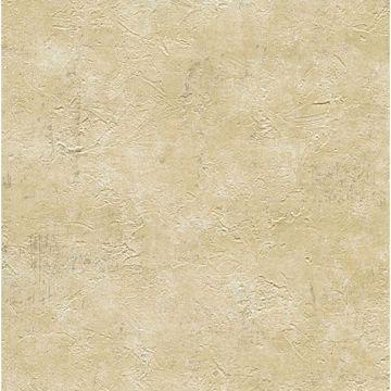 Plumant Brown Faux Plaster Texture