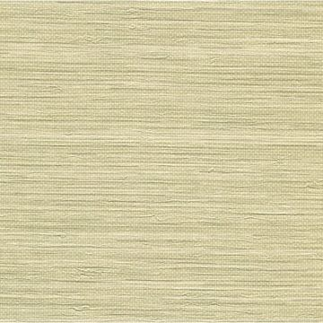 Viendra Sand Faux Grasscloth