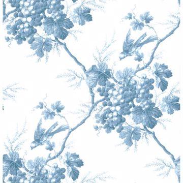 Napa Valley Blue Grape Toile