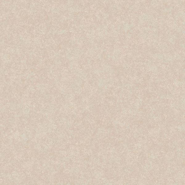 Neutral Augusteen Texture