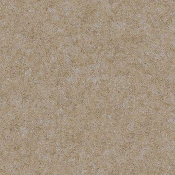 Copper Augusteen Texture