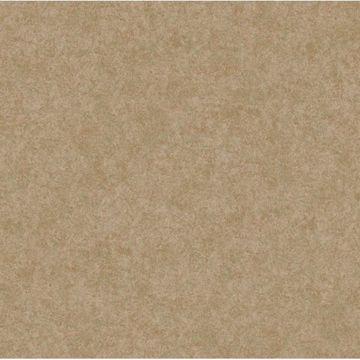 Bronze Augusteen Texture