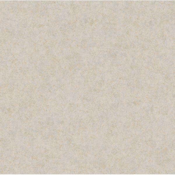 Grey Augusteen Texture