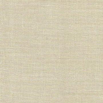 Barbosa Beige Woven Texture