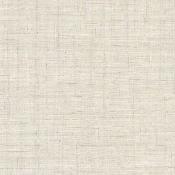 Eanes Grey Fabric Weave Texture