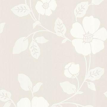 Sayles Cream Modern Poppy Floral