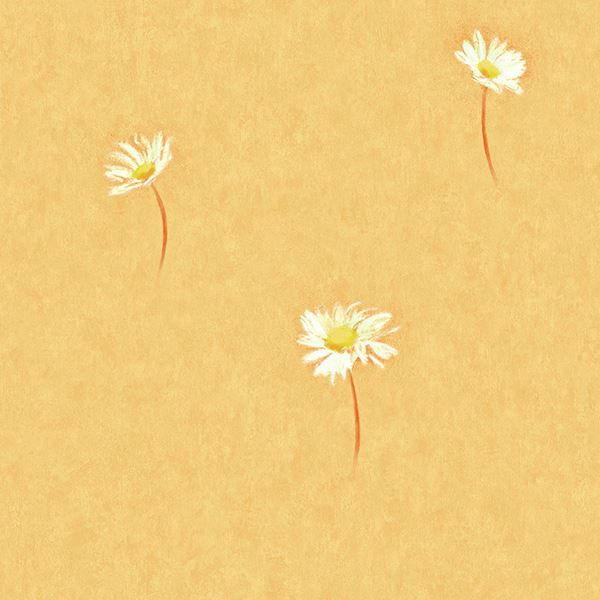 Selby Orange Single Daisy Toss