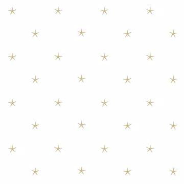 White Sands  Beige Starfish
