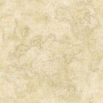 Hardings Beige World Map