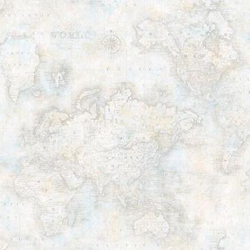 Hardings Grey World Map