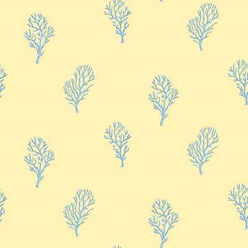 Islamorada Yellow Coral Branch