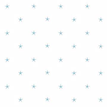 White Sands  Aqua Starfish