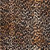 Cheetah Flock Adhesive Film