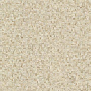 Sanaa Beige Paperweave Texture