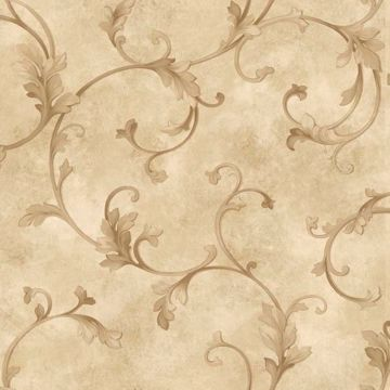 Voluta Beige Acanthus Scroll