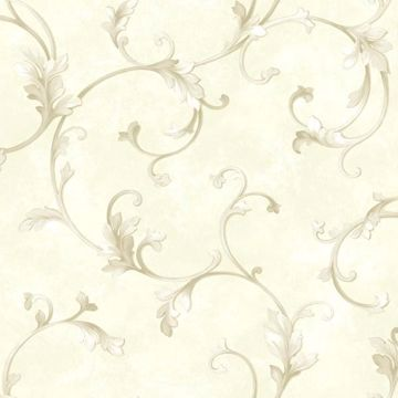 Voluta Cream Acanthus Scroll