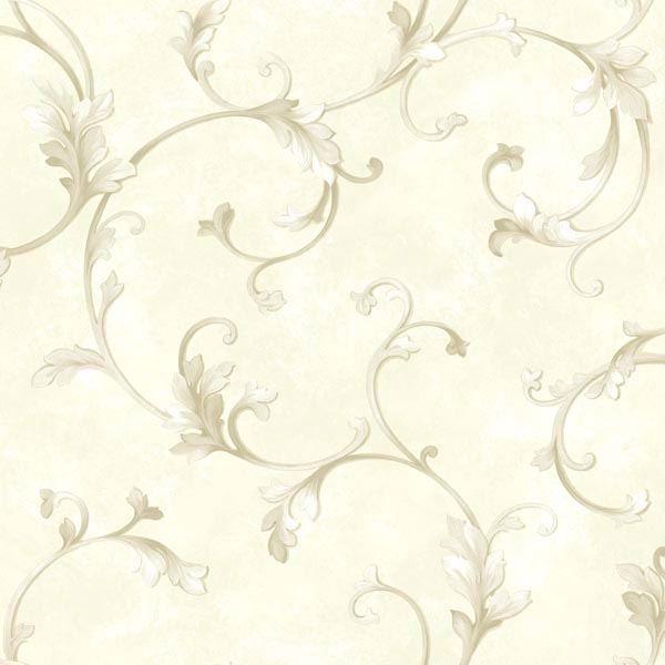 Voluta Cream Acanthus Scroll