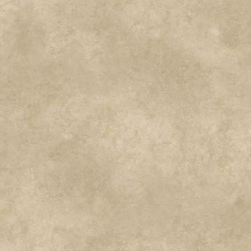 May Grey Marble Texture