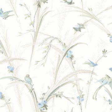 Cheshire Blue Meadowlark Trail
