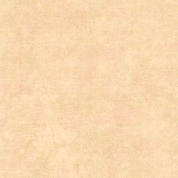 Halstead Apricot Rag Texture