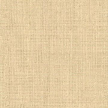Fintex Light Brown Woven Texture