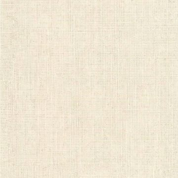 Fintex Taupe Woven Texture