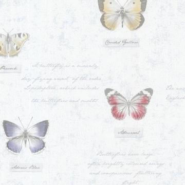Admiral Blue Butterflies and Script