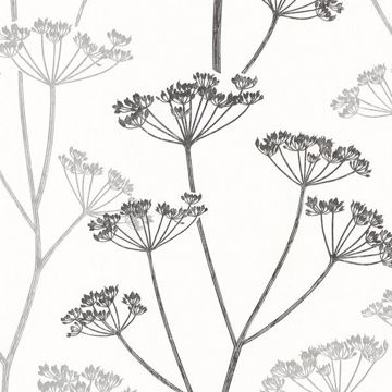 Albury Black Brasilia Flower