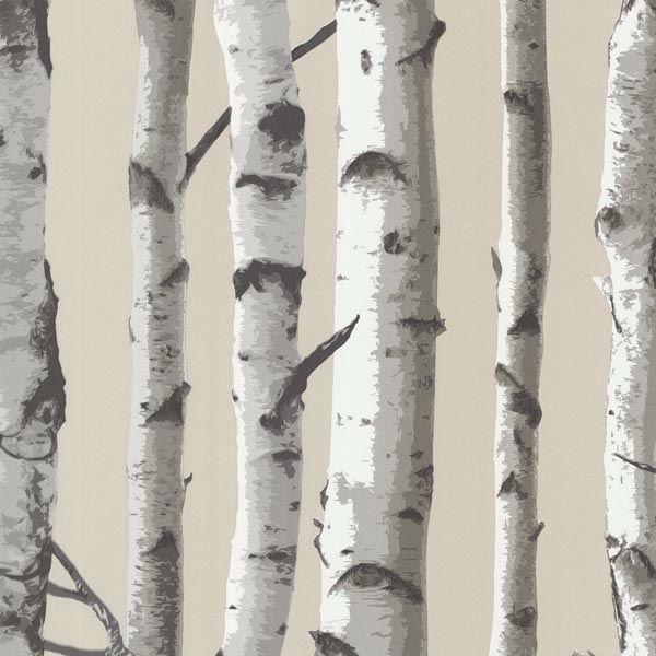 Irvin Grey Birch Tree