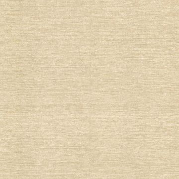 Picture of Danbury Beige Texture