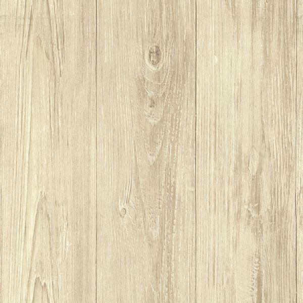Mapleton Birch Faux Wood Texture