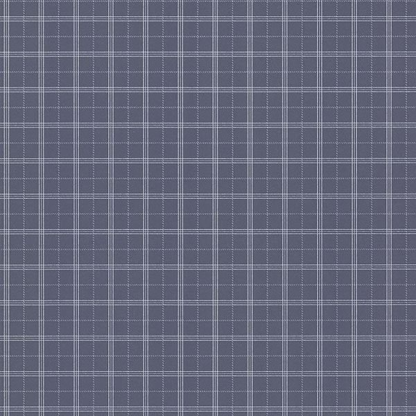 Picture of Meridian Navy Nautical Plaid
