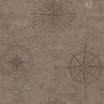 Picture of Navigate Wheat Vintage Compass