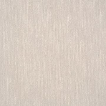 Picture of Calia Neutral Ribbon Texture