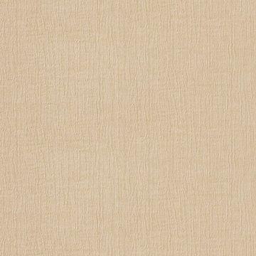 Picture of Rella Champagne Velvet Texture