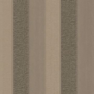 Picture of Millinocket Charcoal Illusion Stripe