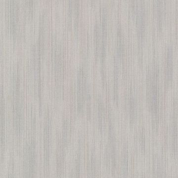 Picture of Blaise Pewter Ombre Texture