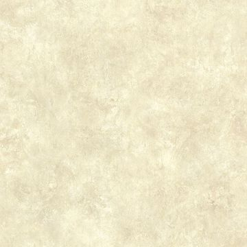 Picture of Squantz Stone Scroll Texture