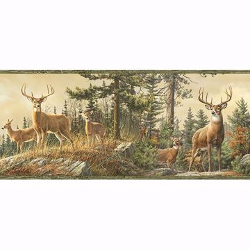 Picture of Ashmere Green Whitetail Crest Border
