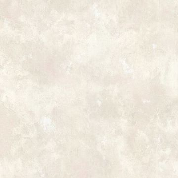 Picture of Ines Beige Texture