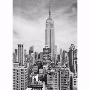 Picture of The Empire State Wall Mural