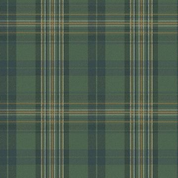 Picture of Austin Green Plaid