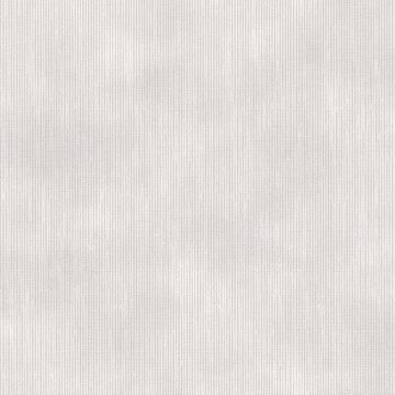 Picture of Tide Light Grey Texture