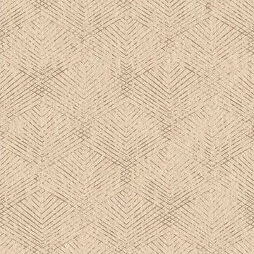 Picture of Fans Brown Texture